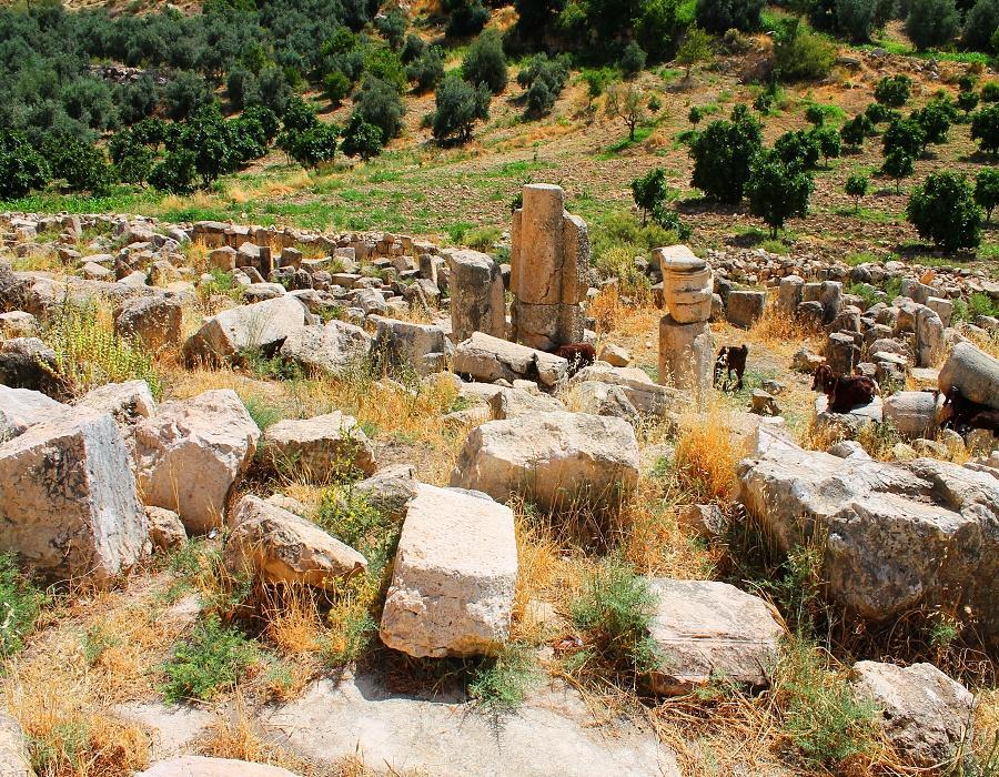 Al-Bassah Cave & Church-Apse of the church
