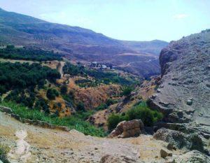 Ayoun Musa (Spring of Moses)